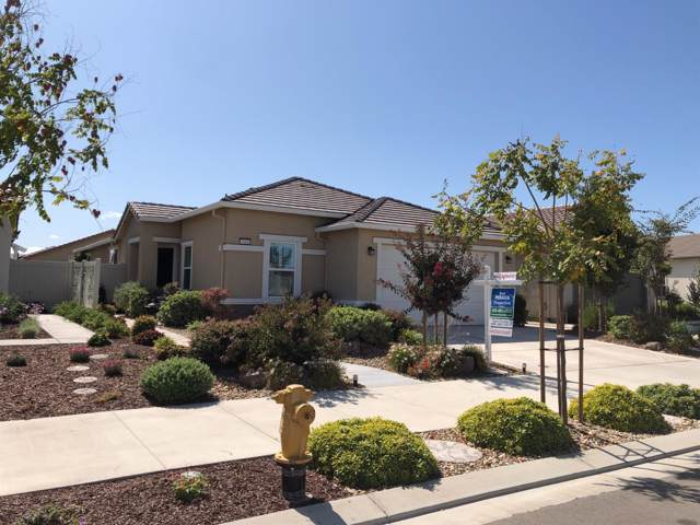 1660 Remington Oaks Street, Manteca, CA 95336 (MLS #20001731) :: REMAX Executive