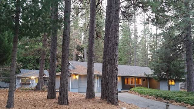 7028 Sugar Pine Drive, Grizzly Flats, CA 95636 (MLS #20002132) :: Folsom Realty