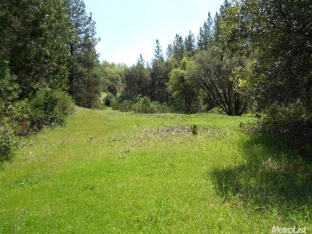 4646 Hwy 193, Greenwood, CA 95635 (MLS #20002480) :: The MacDonald Group at PMZ Real Estate