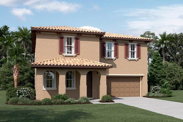 710 Chagall Lane, Stockton, CA 95209 (MLS #20002547) :: Heidi Phong Real Estate Team
