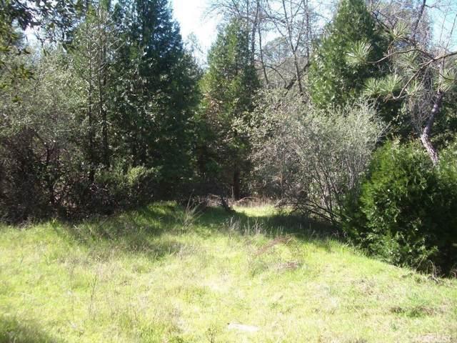 3701 Starburst Lane, Placerville, CA 95667 (MLS #20003053) :: Folsom Realty