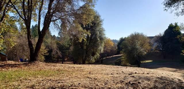 16703 Eden Ranch Road, Nevada City, CA 95959 (MLS #20003398) :: Deb Brittan Team