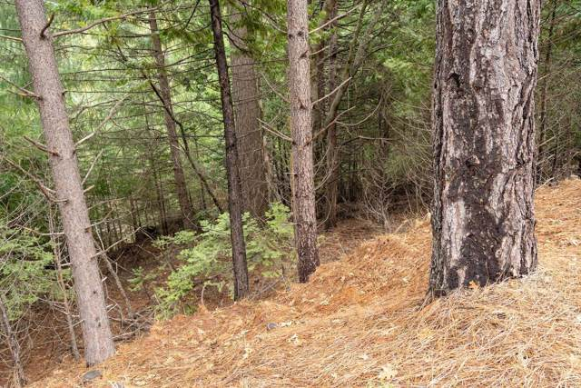 4754 Creekside Drive, Grizzly Flats, CA 95636 (MLS #20003876) :: REMAX Executive