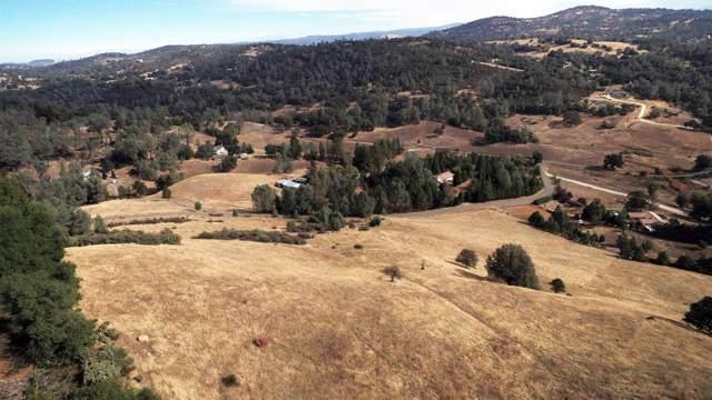 10 Pleasant Ranch Rd Road, Placerville, CA 95667 (MLS #20004713) :: Deb Brittan Team