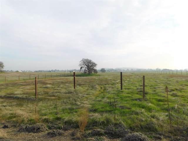 1540 Duck Creek Road, Ione, CA 95640 (MLS #20004819) :: Deb Brittan Team