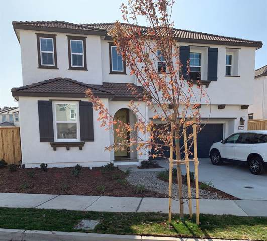 6425 Dan Havicus Street, Tracy, CA 95377 (MLS #20004836) :: REMAX Executive