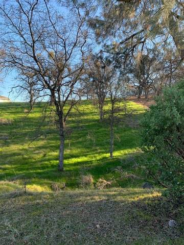 0 Cadena, Coulterville, CA 95311 (MLS #20006434) :: Dominic Brandon and Team