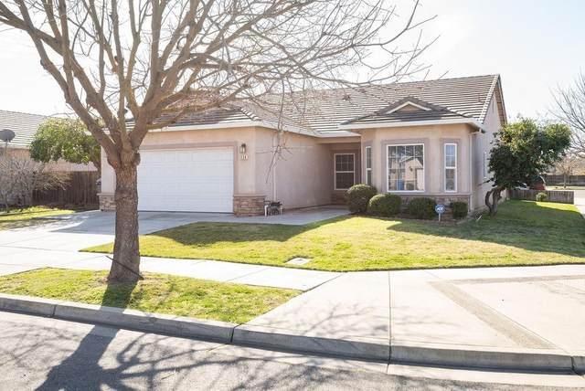 1154 Alondra Drive, Ceres, CA 95307 (MLS #20008310) :: The Merlino Home Team