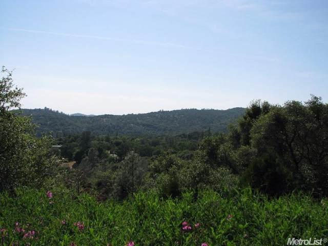 20215 Midland Drive, Sonora, CA 95370 (MLS #20008337) :: REMAX Executive