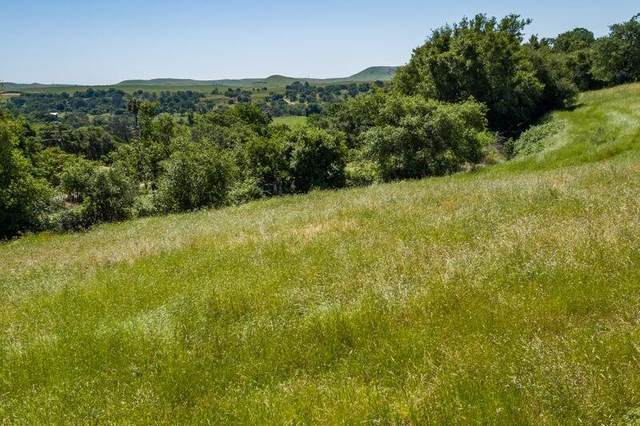 0 Frymire Road Lot 1, Knights Ferry, CA 95361 (#20009640) :: The Lucas Group