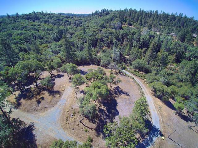 14790 Shake Ridge Road, Sutter Creek, CA 95685 (MLS #20009828) :: Keller Williams Realty