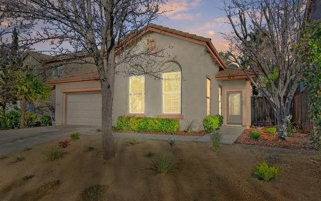 6521 Mystery Mountain Way, Rocklin, CA 95765 (MLS #20009897) :: The Merlino Home Team