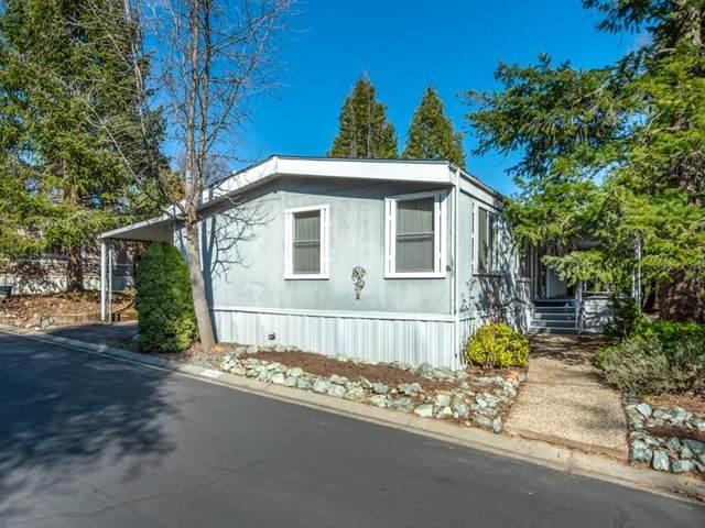 2990 Spring View Lane, Placerville, CA 95667 (MLS #20010157) :: Keller Williams - The Rachel Adams Lee Group