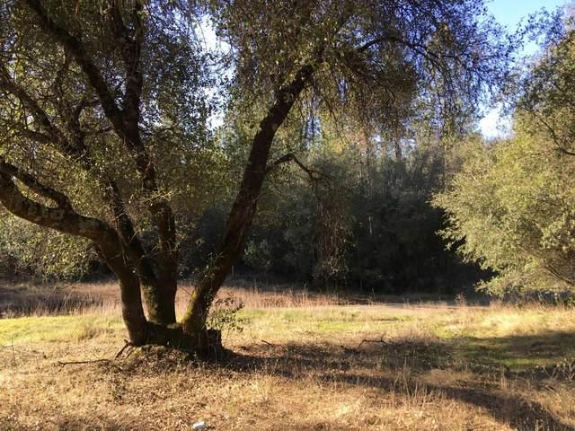 0 Musholt Rd, Dobbins, CA 95935 (MLS #20010528) :: Keller Williams - Rachel Adams Group