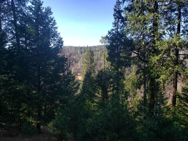 5221 Five Spot Road, Pollock Pines, CA 95726 (MLS #20010814) :: Folsom Realty