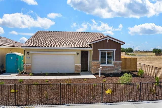 750 Andrea Drive, Merced, CA 95348 (MLS #20011059) :: The Merlino Home Team