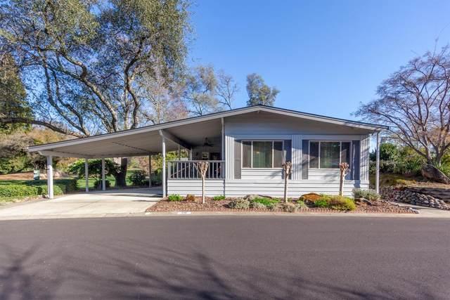 291 Stonebrook Drive, Folsom, CA 95630 (MLS #20011215) :: REMAX Executive