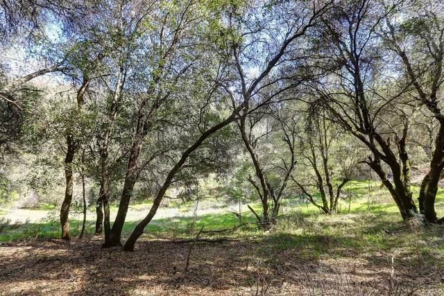 16177 Annie Drive, Grass Valley, CA 95949 (MLS #20013782) :: REMAX Executive