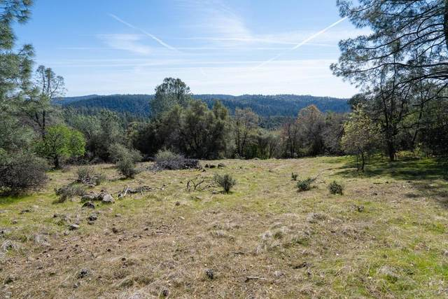 16651 Stone Jug Road, Sutter Creek, CA 95685 (MLS #20013813) :: The MacDonald Group at PMZ Real Estate