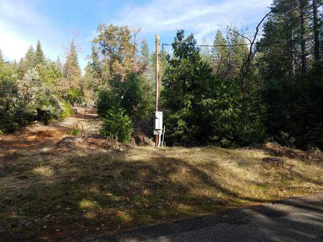 6465 Deer Canyon Court, Placerville, CA 95667 (MLS #20013928) :: REMAX Executive