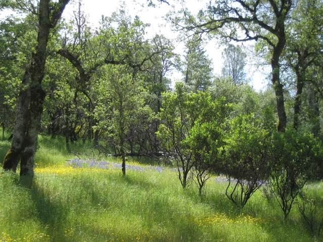 20375 Deer Meadow, Penn Valley, CA 95946 (MLS #20014621) :: REMAX Executive
