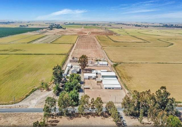 4710-South Brewer, Pleasant Grove, CA 95668 (MLS #20014951) :: Dominic Brandon and Team