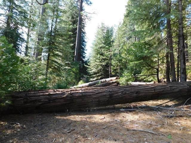 1435 Lili Valley Circle, West Point, CA 95255 (MLS #20015085) :: Keller Williams - The Rachel Adams Lee Group
