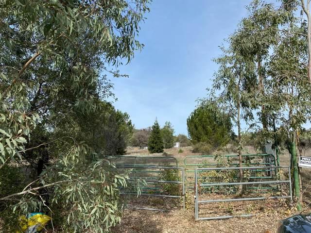 19010 Claypit Road, Ione, CA 95640 (MLS #20015595) :: Heidi Phong Real Estate Team