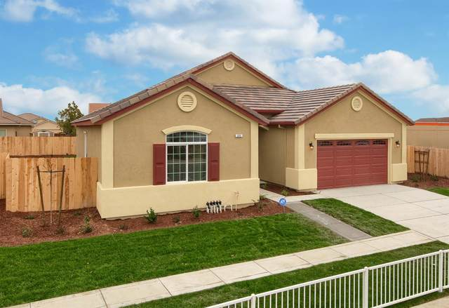 225 Red Lion Way, Newman, CA 95360 (MLS #20015824) :: The Merlino Home Team