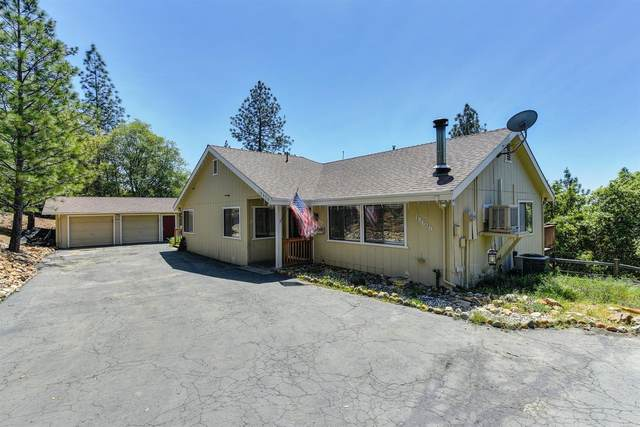 18630 Mountain View Drive, Pine Grove, CA 95665 (MLS #20016301) :: Dominic Brandon and Team