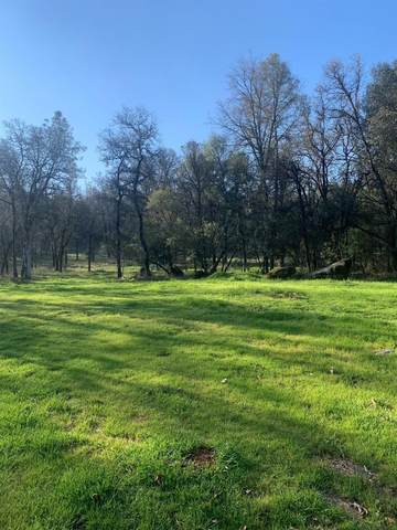 17276 Harper Lane, Penn Valley, CA 95946 (MLS #20017686) :: Dominic Brandon and Team
