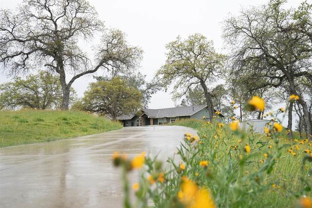 35696 Road Runner Lane, Raymond, CA 93653 (MLS #20018113) :: The MacDonald Group at PMZ Real Estate