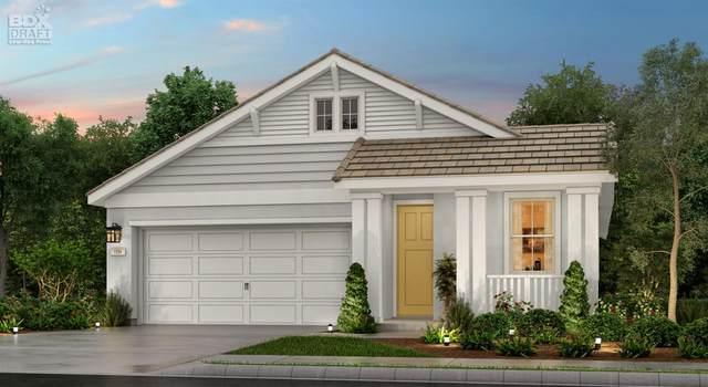 10025 Carinata Drive, Elk Grove, CA 95757 (MLS #20018130) :: The MacDonald Group at PMZ Real Estate