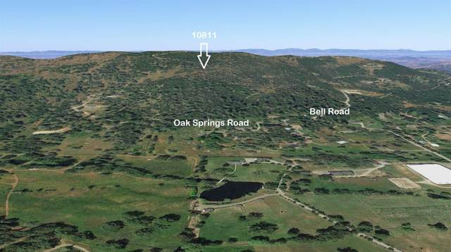 10811 Bell Road, Penn Valley, CA 95946 (MLS #20018696) :: Dominic Brandon and Team