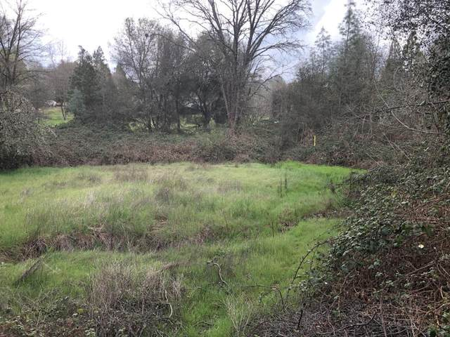 1082 Bridgeview Drive, Placerville, CA 95667 (MLS #20018698) :: The MacDonald Group at PMZ Real Estate
