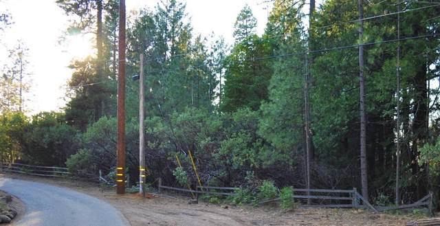 0 Red Robin Road, Placerville, CA 95667 (MLS #20019288) :: Dominic Brandon and Team