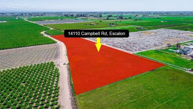14110 Campbell Road, Escalon, CA 95320 (MLS #20019565) :: REMAX Executive