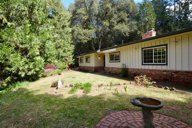 19524 State Highway 88, Pine Grove, CA 95665 (MLS #20019805) :: Deb Brittan Team