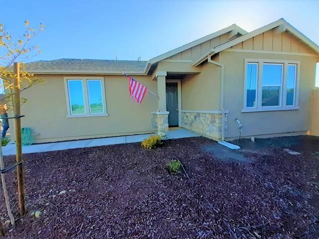 803 Castellona Drive, Newman, CA 95360 (MLS #20020187) :: Heidi Phong Real Estate Team
