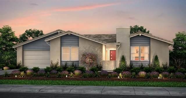4549 Margaret Adele Lane, Tracy, CA 95377 (MLS #20020257) :: Heidi Phong Real Estate Team