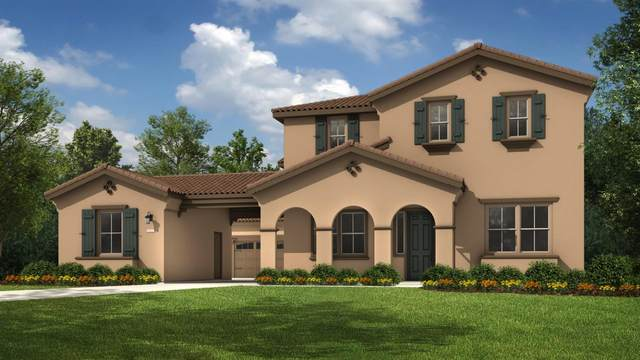 8567 Greylag Way, Elk Grove, CA 95757 (MLS #20020574) :: Heidi Phong Real Estate Team