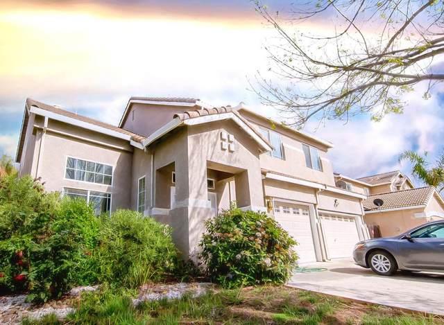 2804 Mars Hills Street, Modesto, CA 95355 (MLS #20020608) :: REMAX Executive