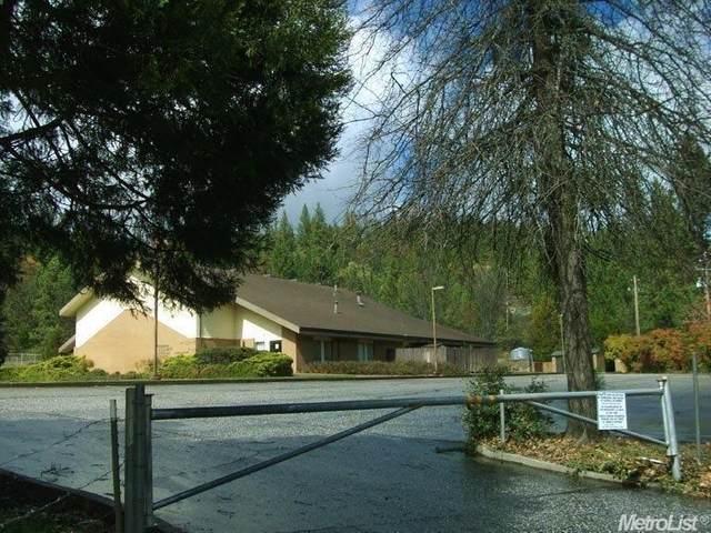 14670 Marysville Road, Camptonville, CA 95922 (MLS #20021283) :: REMAX Executive