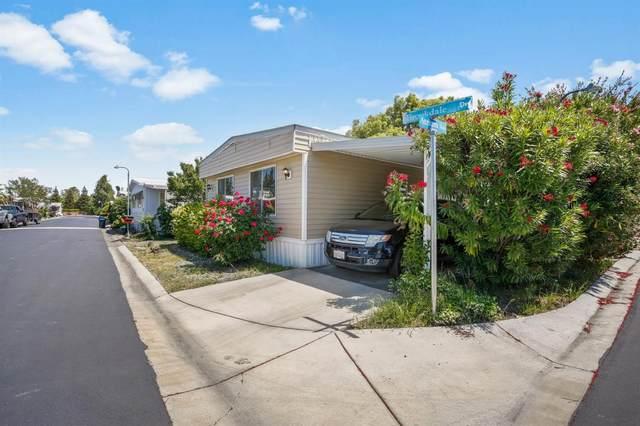 4910 Brookdale Drive, Sacramento, CA 95834 (MLS #20025388) :: Keller Williams - The Rachel Adams Lee Group