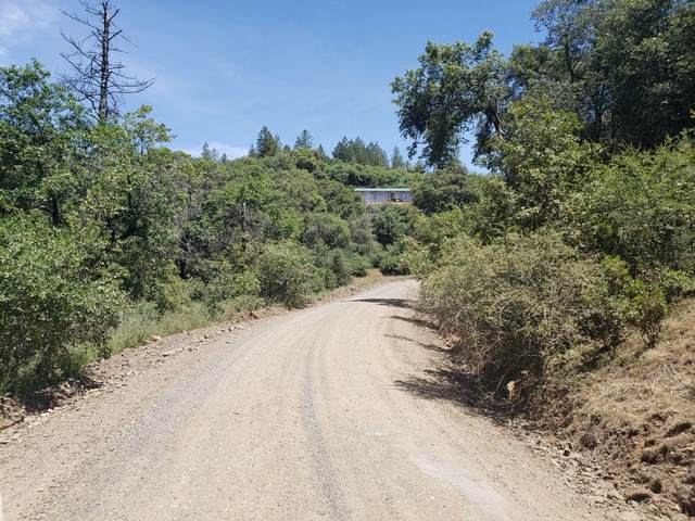 0 No Name, Coulterville, CA 95311 (MLS #20026820) :: REMAX Executive
