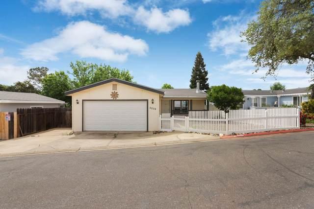 5654 Cody Drive, Ione, CA 95640 (MLS #20027299) :: The Merlino Home Team