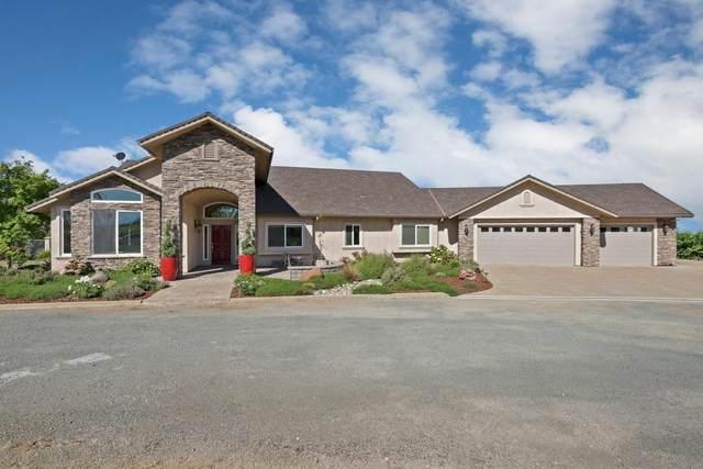 19361 Atkins Road, Lodi, CA 95240 (MLS #20027852) :: Heidi Phong Real Estate Team