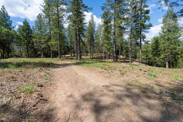 0 Lupe Road, Pine Grove, CA 95665 (MLS #20028926) :: Dominic Brandon and Team