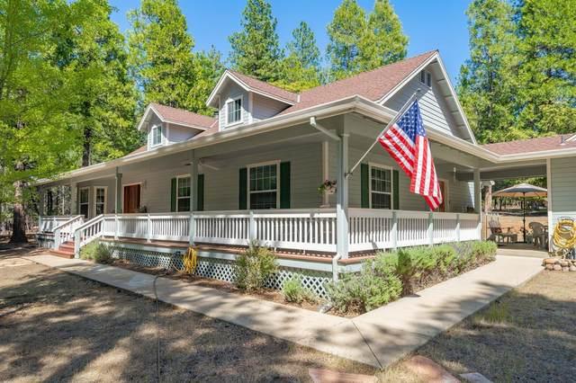 19790 Buckboard Drive, Volcano, CA 95689 (MLS #20029033) :: Heidi Phong Real Estate Team
