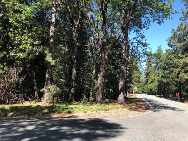 0 Corner Of Old Madrone & Carson, Pioneer, CA 95666 (MLS #20029407) :: Heidi Phong Real Estate Team